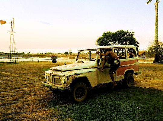 旅、EarthTribe、世界一周、ブログ、バックパッカー、トラベラー、画像、ブラジル、マラジョー島、アマゾン、動物
